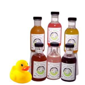 six pack sampler kombucha lil duck