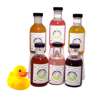 summer sampler lil duck kombucha